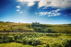 Ajardine em torno do desfiladeiro de Uvac do rio na manhã ensolarada do verão Imagem de Stock Royalty Free