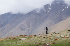Ajardine em torno do distrito de Leh em Ladakh, Índia Imagens de Stock Royalty Free