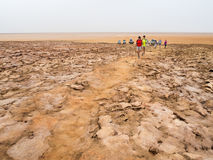 Ajardine em torno do lago Dallol na depressão de Danakil, Ehtiopia Foto de Stock