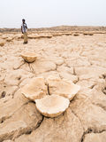 Ajardine em torno do lago Dallol na depressão de Danakil, Ehtiopia Imagens de Stock