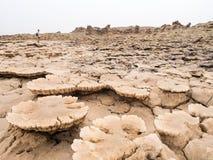 Ajardine em torno do lago Dallol na depressão de Danakil, Ehtiopia Fotos de Stock Royalty Free