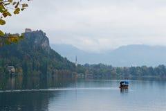 Ajardine em torno do lago sangrado no outono em Eslovênia Fotografia de Stock