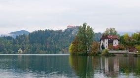 Ajardine em torno do lago sangrado no outono em Eslovênia Fotos de Stock