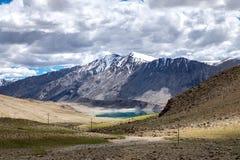 Ajardine em torno do Tso de Kyagar perto de Tso Moriri em Ladakh, Índia Fotos de Stock