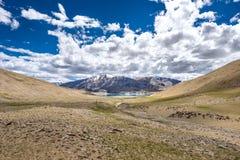 Ajardine em torno do Tso de Kyagar perto de Tso Moriri em Ladakh, Índia Fotografia de Stock Royalty Free
