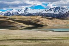 Ajardine em torno do Tso de Kyagar perto de Tso Moriri em Ladakh, Índia Fotografia de Stock