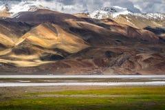 Ajardine em torno do Tso de Kyagar perto de Tso Moriri em Ladakh, Índia Foto de Stock Royalty Free