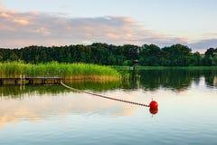 Ajardine em um lago com árvores e juncos Imagens de Stock Royalty Free