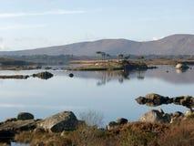 Ajardine em um lago em Ireland Foto de Stock