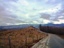 Ajardine em um monte em uma manhã nublado com uma estrada de enrolamento Fotografia de Stock Royalty Free