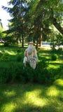 Ajardine em um parque do verão com uma escultura imagens de stock royalty free