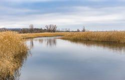 Ajardine em um rio pequeno Omelnik perto da vila de Mosty, Ucrânia central Fotografia de Stock