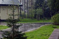 Ajardine em uma chuva running ao lado de uma árvore de Natal em um fundo da casa de campo Imagens de Stock Royalty Free