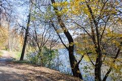 Ajardine em uma lagoa da cidade no dia ensolarado do outono Fotos de Stock