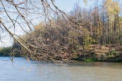 Ajardine em uma lagoa da cidade no dia ensolarado do outono Foto de Stock