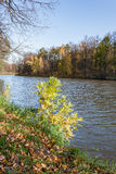 Ajardine em uma lagoa da cidade no dia ensolarado do outono Imagem de Stock Royalty Free