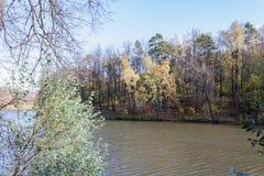Ajardine em uma lagoa da cidade no dia ensolarado do outono Fotografia de Stock