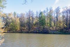 Ajardine em uma lagoa da cidade no dia ensolarado do outono Fotos de Stock Royalty Free