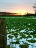 Ajardine em Wachtendonk/para o norte em Reno-Westphalia/ALEMANHA no inverno Foto de Stock