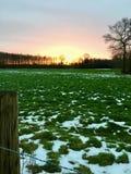 Ajardine em Wachtendonk/para o norte em Reno-Westphalia/ALEMANHA no inverno Imagens de Stock