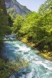 Ajardine en Abjasia con el canto y el río caucásicos fotografía de archivo