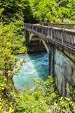 Ajardine en Abjasia con el puente de piedra sobre el río foto de archivo