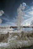 Ajardine en el infrarrojo del lago en campo inglés en verano Imágenes de archivo libres de regalías