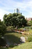 Ajardine en el jardín japonés con el puente de madera Parque de la ciudad imagen de archivo libre de regalías