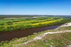 Ajardine en el valle de Don River en Rusia central Foto de archivo