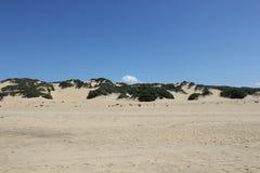Ajardine en el verde de la costa de la costa costa compuesto de la arena blanca en Cerdeña - Italia foto de archivo libre de regalías