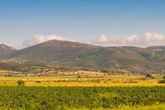 Ajardine en Evvoia en Grecia con un prado y las turbinas de viento encima de las montañas Fotografía de archivo