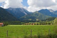 Ajardine en las montañas con los prados verdes frescos y los tops florecientes del flor y coronados de nieve de la montaña Imágenes de archivo libres de regalías