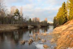 Ajardine en los bancos del río Oredezh Imagen de archivo