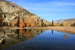 Ajardine en otoño fotografía de archivo libre de regalías