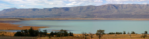 Ajardine en patagonia fotografía de archivo