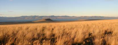 Ajardine en patagonia imagen de archivo libre de regalías