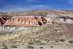 Ajardine en patagonia Imágenes de archivo libres de regalías