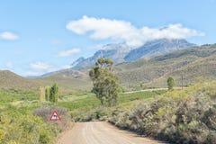 Ajardine entre Hoeko e Ladismith com o Swartberg na parte traseira Foto de Stock Royalty Free