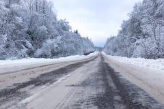 Ajardine a estrada na floresta do inverno com coberto de neve Imagens de Stock