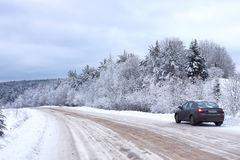 Ajardine a estrada na floresta do inverno com coberto de neve Imagem de Stock