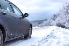 Ajardine a estrada na floresta do inverno com coberto de neve Fotografia de Stock Royalty Free