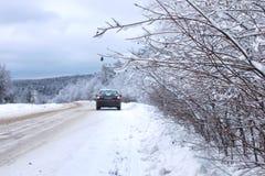 Ajardine a estrada na floresta do inverno com coberto de neve Foto de Stock