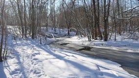 Ajardine fluxos de córrego da floresta na neve da natureza da floresta do inverno Foto de Stock