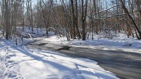 Ajardine fluxos de córrego da floresta na neve da natureza da floresta do inverno Fotos de Stock