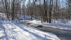Ajardine fluxos de córrego da floresta na neve da natureza da floresta do inverno Fotos de Stock Royalty Free