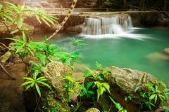 Ajardine a foto da cachoeira bonita na floresta úmida, Huay Mae K Foto de Stock Royalty Free