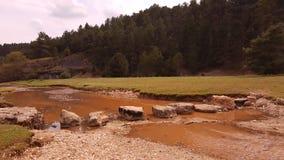 Ajardine a garganta dos lobos do rio em soria Fotografia de Stock Royalty Free