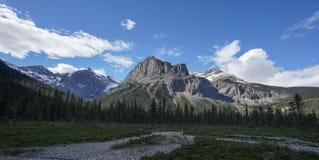 Ajardine a ideia da cena canadense da montanha no verão com floresta & o céu azul Imagens de Stock Royalty Free