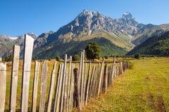 Ajardine a ideia da cordilheira do Mt Ushba em Svaneti, Geórgia Imagens de Stock Royalty Free