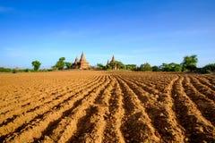 Ajardine a ideia de templos antigos e de campo, Bagan, Myanmar Imagens de Stock